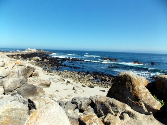 Monterey Bay: Soem beaches are rocky