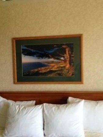Bayview Motel: Room 104: Artwork
