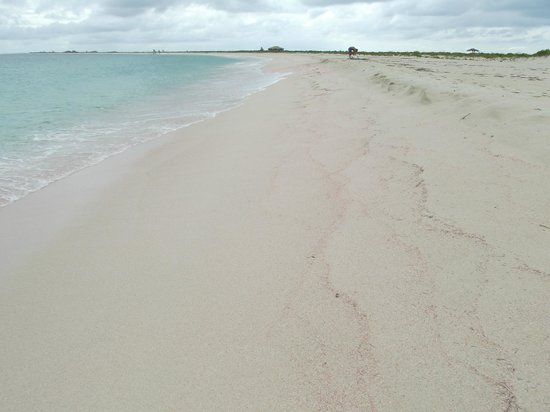 Low Bay : pink sand beach