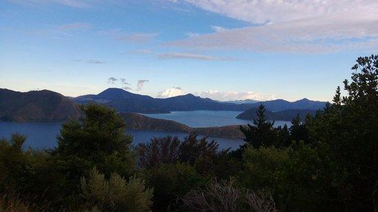 Homewood Bay Lodge: view 2