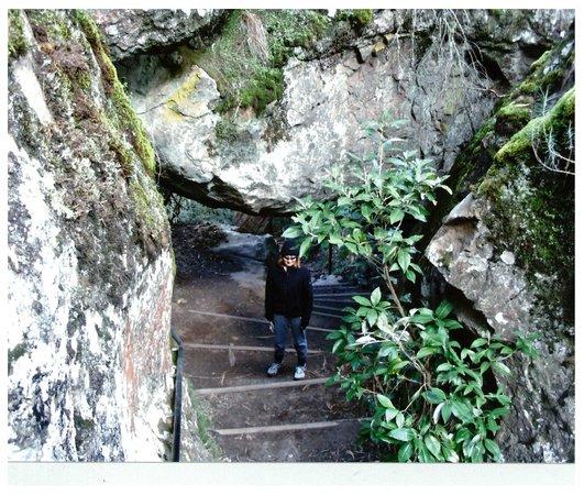 Hanging Rock Reserve: Stone steps at Hanging Rock