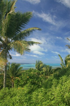 Paradise Cove Lodges: view from the top
