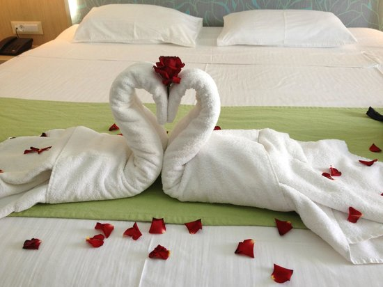 Castello Boutique Resort & Spa: Our honeymoon swans
