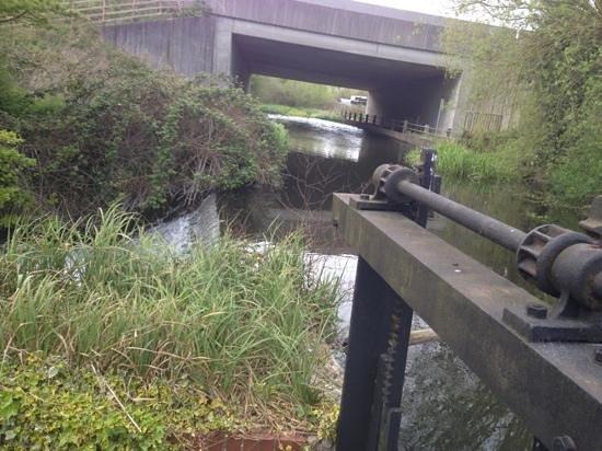 Moor Mill Beefeater: motorway