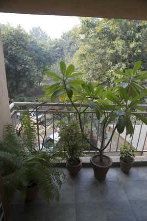 Chhoti Haveli: View from living room balcony