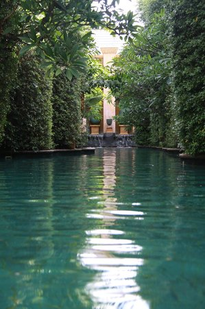 The Baray Villa : Another one for the pool