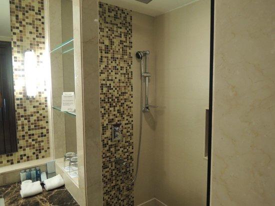 Radisson Blu Agra Taj East Gate: Bathroom - No tub but awesome rain shower.
