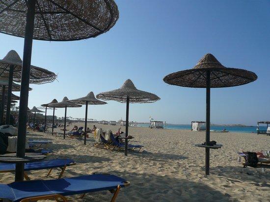 Jaz Almaza Beach Resort: the beach