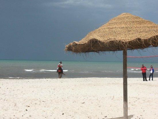 Playa Sidi Mehrez, Tunezja: eau tropicale...