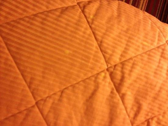 Comfort Inn Rocky Mount: yellow stains on a wrinkled dated comforter