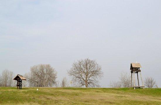 Kopacki Rit Nature Park照片