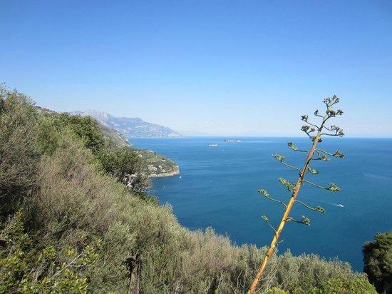 Agriturismo La Lobra: Auf der Wanderung (Halbinsel Penna / Mortella)