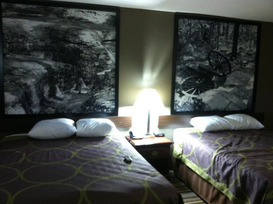 Super 8 Murfreesboro : Beautiful room
