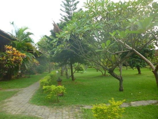 Bayu Mantra Bungalows: Garden Area