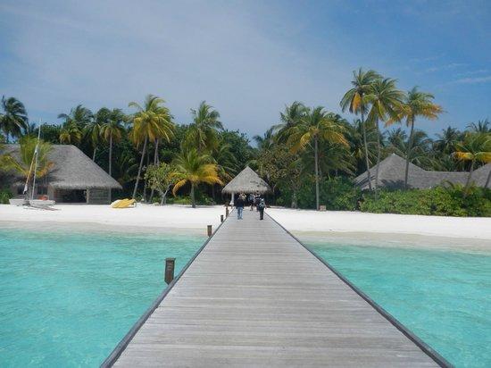 Veligandu Island Resort & Spa: arrivo a molo