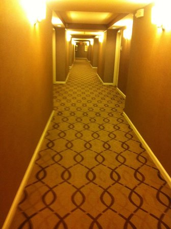 Sheraton Metairie New Orleans: hall