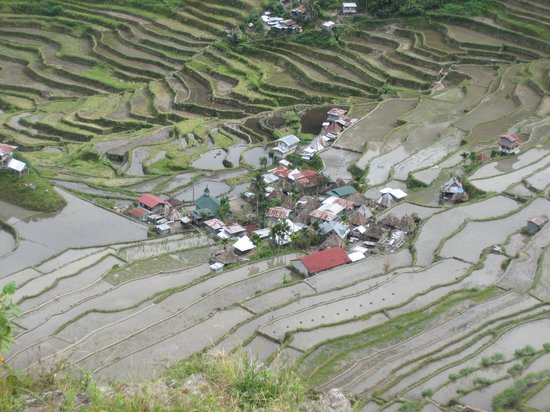 Uncharted Philippines Adventure Travel and Day Tours: Village in Batad
