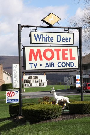 White Deer Motel : Sign from road