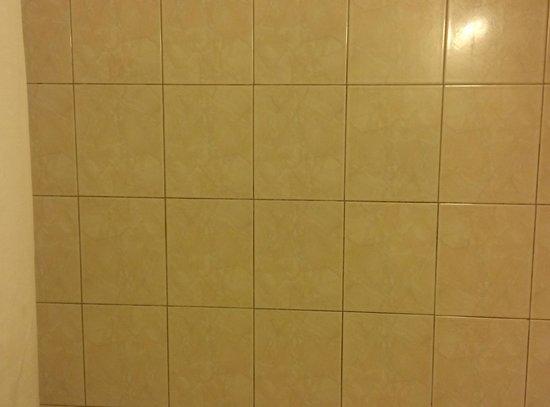 Super 8 by Wyndham Waldorf: Mildew in Shower