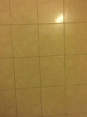 Super 8 Waldorf: Mildew in Shower