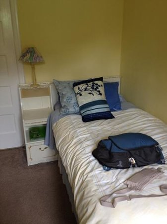 The Ivy Dene Guest House: Twin room at the Ivy Dene.