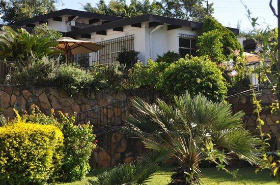 Plumbago Guest House: Flora und Fauna draußen...