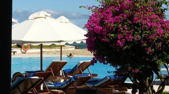 Garoda Resort: Vista della piscina