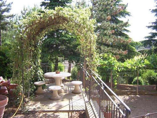L'Albergaccio : patio