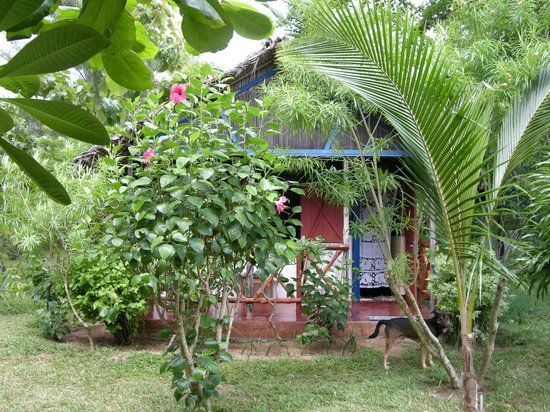 Hôtel Aladabo : Bugalow