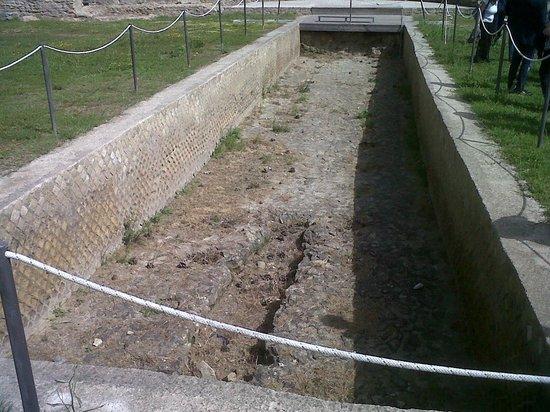 Parco Archeologico Pausilypon: Vasca