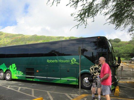 Grand Circle Island Tour Review