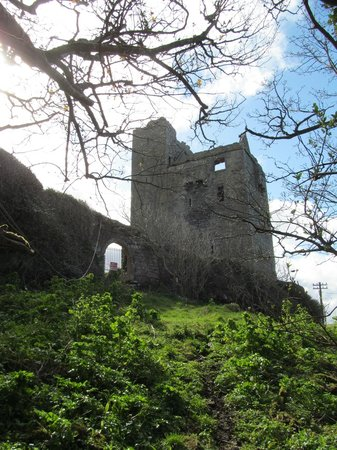 Ballinalacken Castle Country House: I would have liked to see the ruins up close