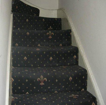 Goodwood Hotel: stair carpet