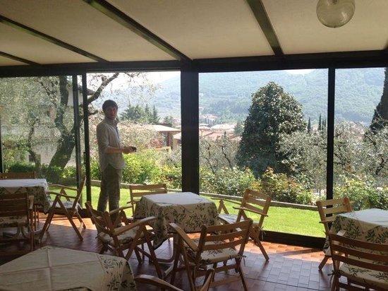 Hotel Degli Olivi: Veranda