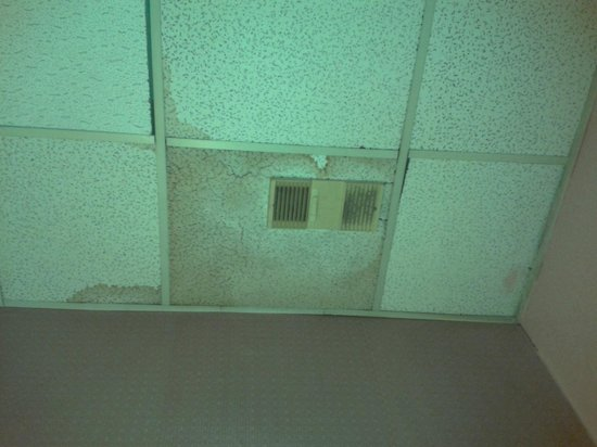 Biltmore Suites Hotel: water damage