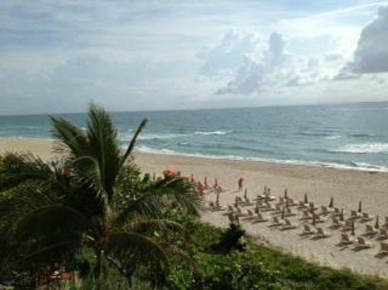 Four Seasons Resort, Palm Beach: The beach