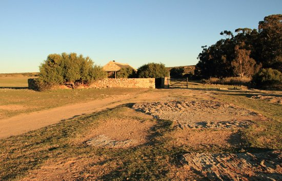 Papkuilsfontein Guest Farm: Evening view of Rondekraal