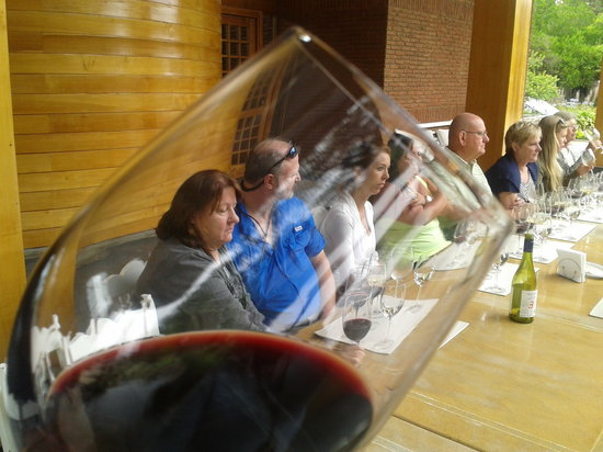 Travel Guide Chile: At Emiliana Organic Winery in Valley of Casablanca