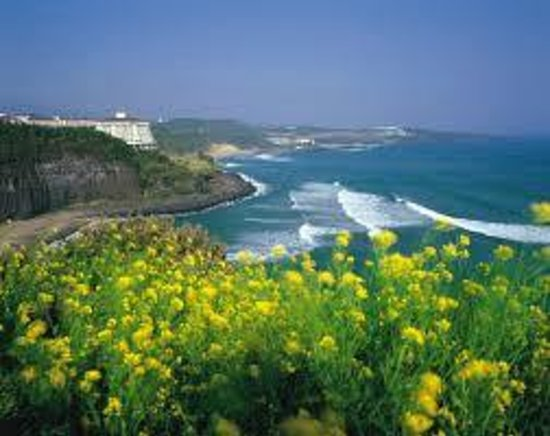 Jeju Island Vacations