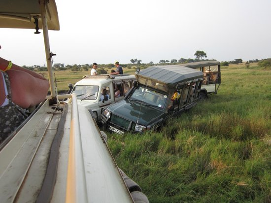 Royal Mara Safari Lodge: Helping a stranded party out of a ditch.