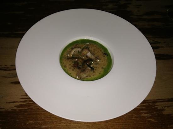 THE TREBY ARMS: Wild garlic risotto, saute wild mushrooms, cep foam