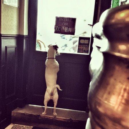 L'estrapade : Holly monte la garde...