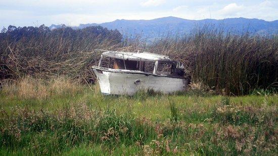 Cabaña Buenavista lago de Tota: Old boat