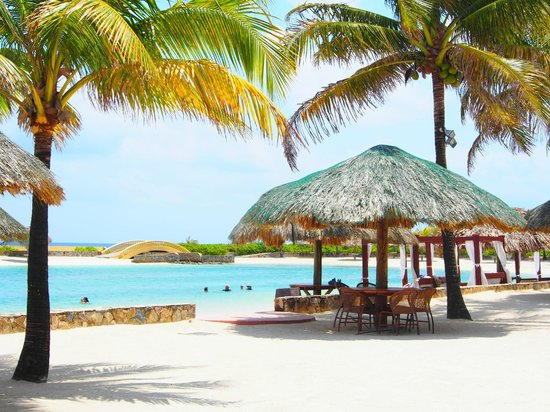 Parrot Tree Beach Resort: Nicely Landscaped