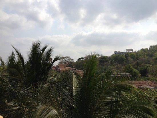 Bougainvillea Guest House Goa: View from the penthouse