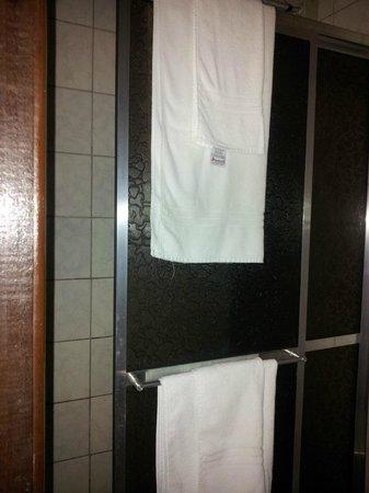 Hotel Orleans: Aspecto do banheiro