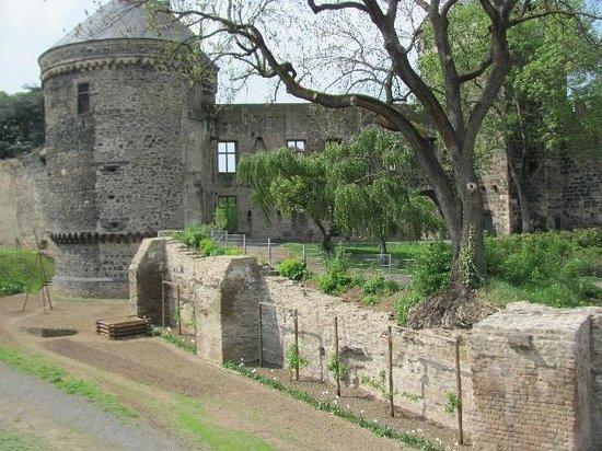 Kurkoelnische Burg