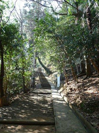 Monkey Park Iwatayama: Monkey park start of trek
