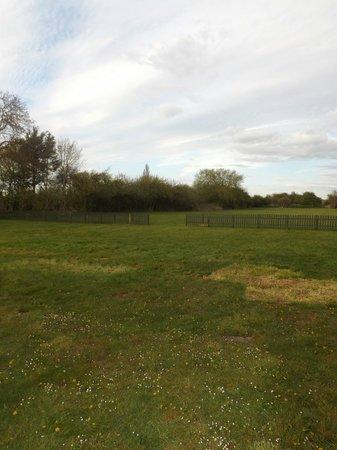 Shelford Lodge: Field behind lodge again