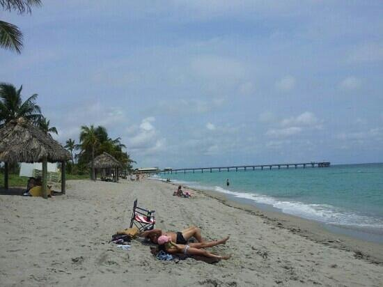 The Hyatt Dania Beach Florida